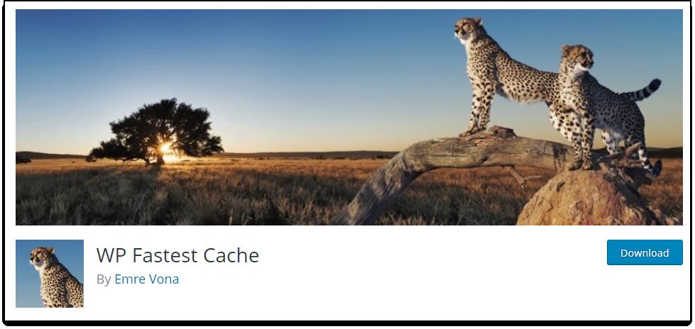 WordPress Cache | WP Fastest Cache plugin