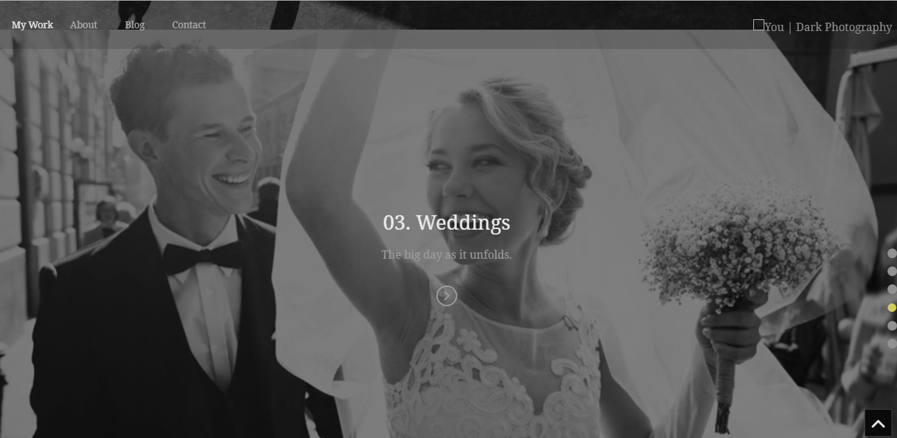 ePix, WordPress Photography theme