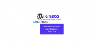Header image for Kinsta, Managed WordPress Hosting Service Review