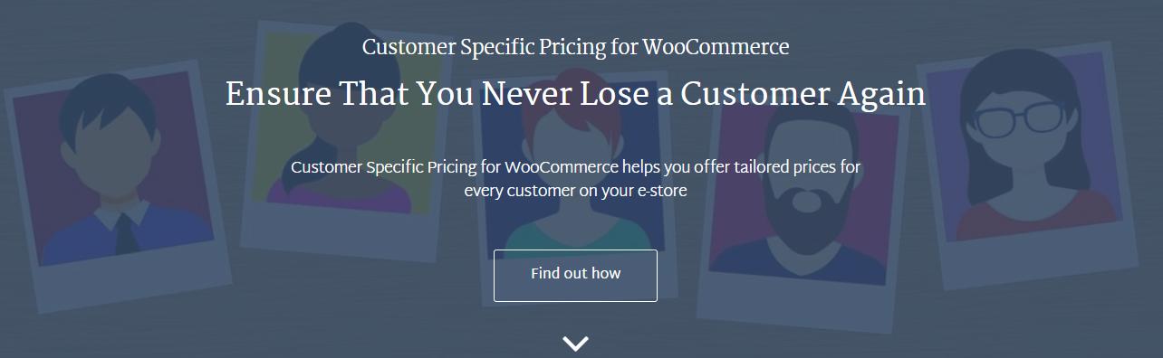 screenshot of Wisdmlabs Customer specific pricing plugin