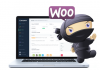 Header image for WooCommerce plugins article