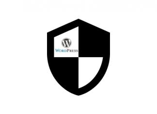 Maximum Cybersecurity WordPress Page