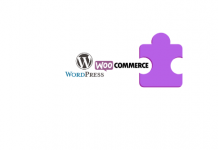Install a WordPress WooCommerce Plugin