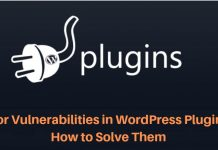 Vulnerabilities in WordPress Plugins