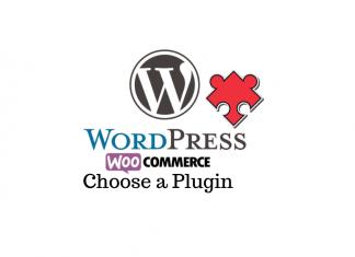 Choose a WordPress and WooCommerce Premium Plugin