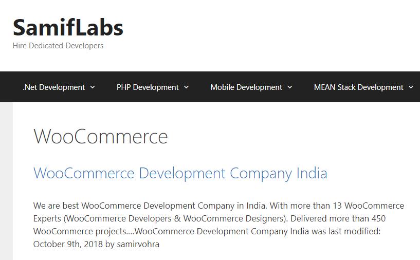 Top SEO companies in India.