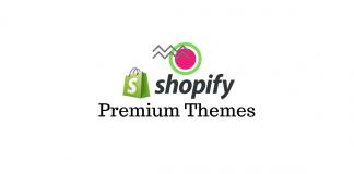Best Premium Shopify themes