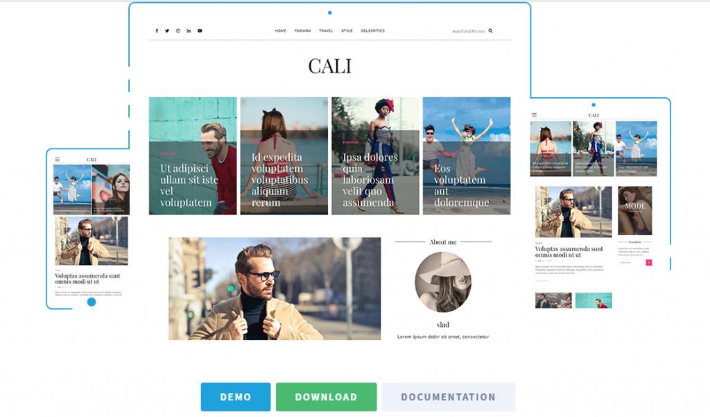 Free WordPress blog themes