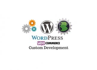 Software development service providers