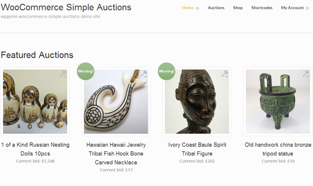 WooCommerce Auctions plugins