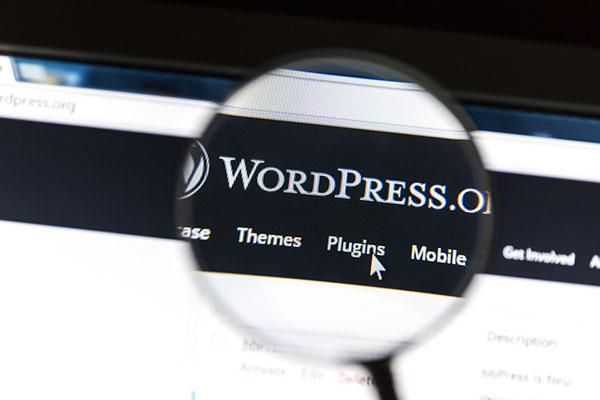 WordPress Plugin Responsive