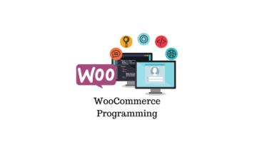 WooCommerce Programming